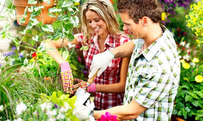 culturacuplului - INGREDIENTUL nr.7 al relațiilor maritale sănătoase